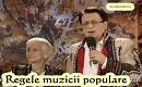 Ion Dolanescu - Eu din sat cand am plecat